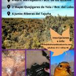 Rutas guiadas ornitología (1)