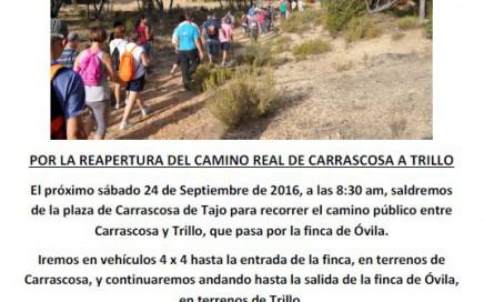 cartel-marcha-carrascosa-trillo-2016