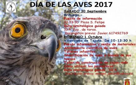 dia de las aves 2017